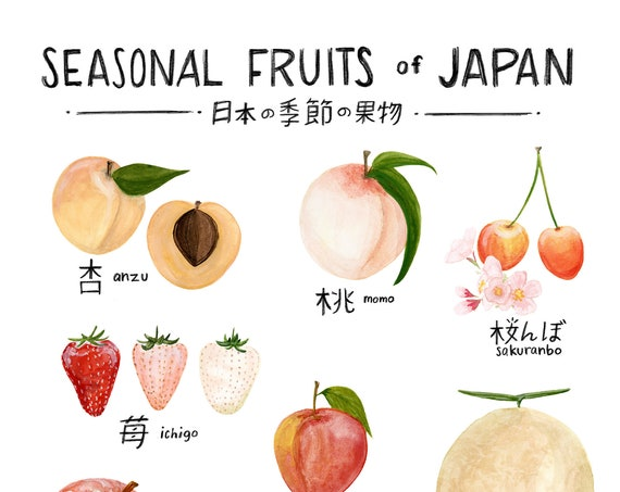 Seasonal Fruits of Japan Print of watercolor illustration