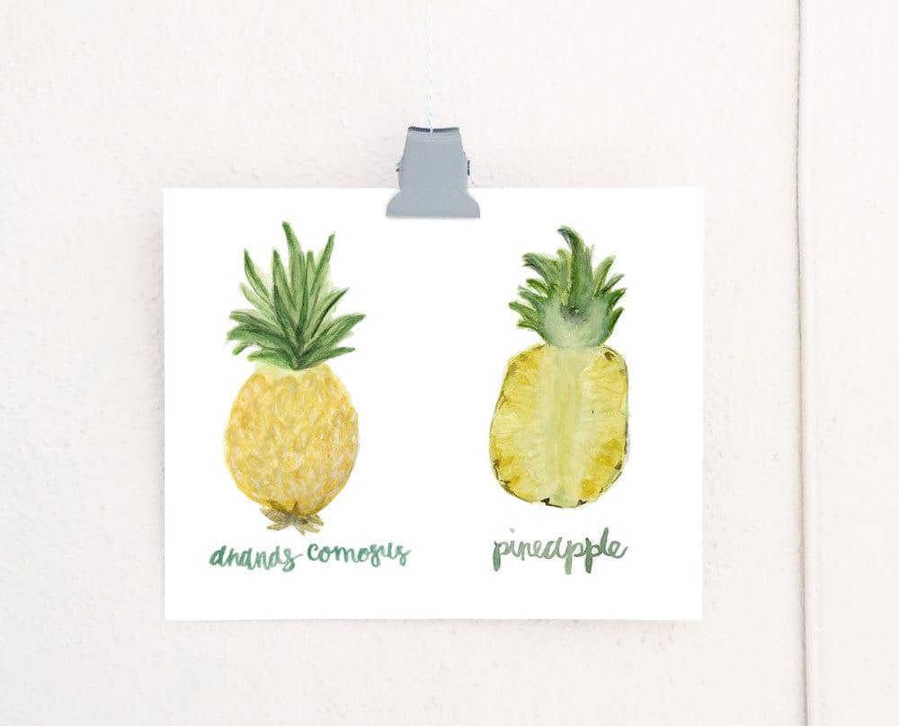 Watercolor Pineapple Anatomy art print of an original watercolor ...