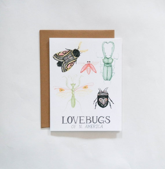 Lovebugs Valentine's Day Card