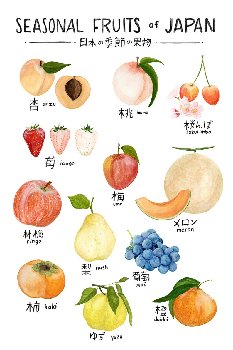 Seasonal Fruits of Japan Print of watercolor illustration image 0