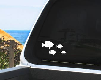 Fishing Family Vinyl Decals - Sheet of 20 Fish in Different Sizes, Bluegill, Crappie, Dorado, Largemouth/Striped Bass, Trout, Snook, Ulua