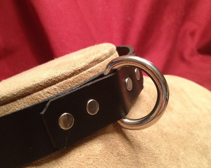 D-Ring Collar