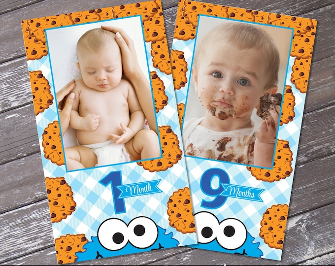 Cookie Monster Inspired First Year Photo Banner - 12 Month Photo Banner, 1st Birthday | Self-Editing with CORJL - INSTANT DOWNLOAD Printable
