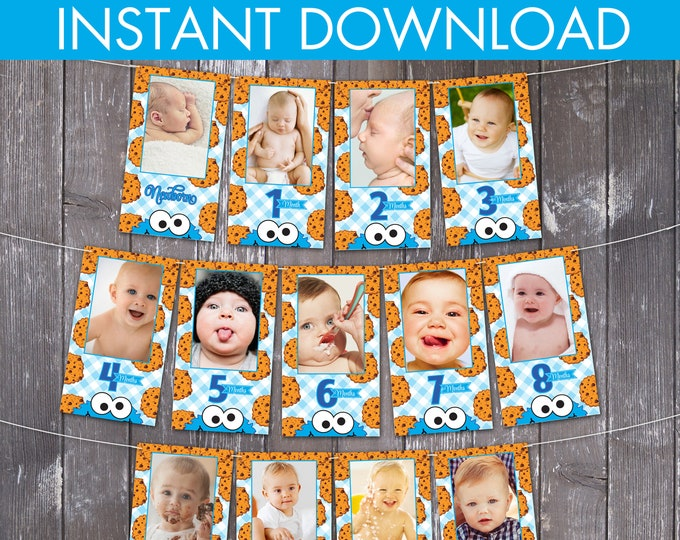 Cookie Monster Inspired First Year Photo Banner - 12 Month Photo Banner, Cookie Monster 1st Birthday | INSTANT Download DIY Printable PDFs