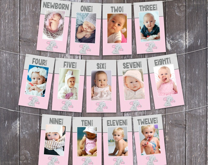 Elephant First Year Photo Banner   12 Month Photo Banner   Elephant 1st Birthday, Elephant Party   INSTANT Download DIY Printable PDFs