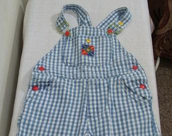 97b24de8e86f6 Vintage Boys Gymboree Blue   White Checked Shortalls