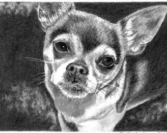 Personalized Gifts Pet Portrait Pet Memorial Custom Pet Portrait Dog Lover Gift