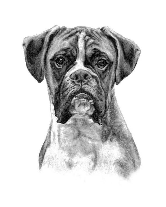 Boxer Dog Custom Pet Portrait Dog Custom Drawing Of Photo Pet Etsy