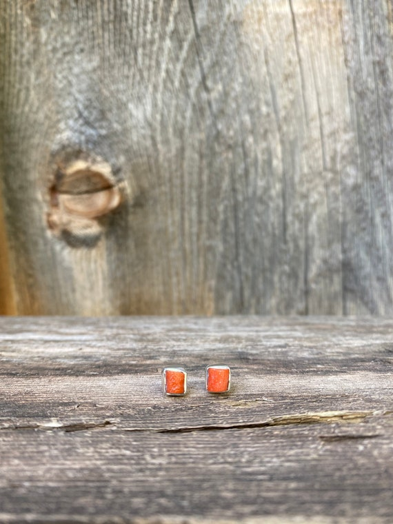 Gorgeous Coral & sterling silver Stud Earrings