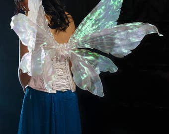 Adult pixie fantasy double Fairy wings