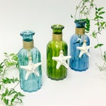 Beach Decor - Glass Bottle with Natural Starfish and optional Coral or Shell -  Priced Individually - Aqua, Green or Blue