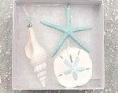 Beach Christmas Ornaments - Gift Boxed Set of 3 Ornaments -Natural Starfish, Sand Dollar Spindle Shell - coastal Xmas gift
