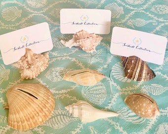 10 Seashell Card Holders with optional Plain White cards - Beach Weddings, Showers, sea shells, place cards, dessert table cards nautical