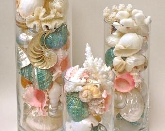 "Beach Decor - Seashells, Coral and Starfish Arrangements  8"", 10"" and 12"""