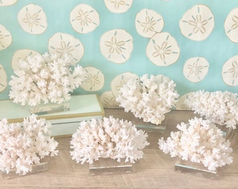 Coral - Natural (Real) Lace Coral mounted on Lucite - Sold individually - real coral coastal beach decor nautical 35th anniversary gift