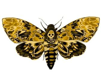 Deaths Head Hawk Moth Print / Deaths Head Hawkmoth Illustration / Hawk Moth Printable Art /Hawk Moth Downloadable Art / DOWNLOADABLE art