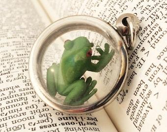 Tree Frog Terrarium Locket Necklace,  Mini Curio Display, Natural World