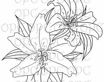 Digital Stamp Stargazer Lilies