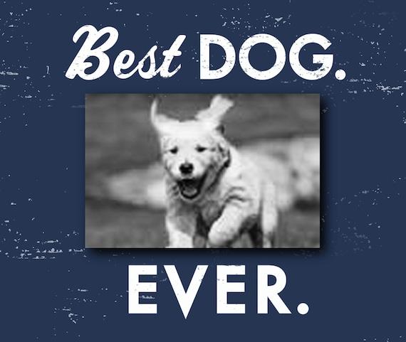 Best Dog Ever 4 X 6 Photo Frame Dog Picture Frame Gift For Etsy
