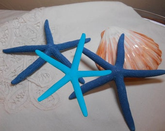 Blue Starfish - Beach Wedding Turquoise Blue Sea Star -approx 5- 5.5 inch - Great for weddings - fingerling starfish
