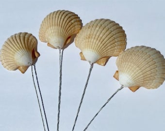 Wired Shells   Bouquet Shells   Wired Clam Shells for Floral Arrangements   Wedding Bouquet Wired Seashells