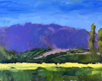 California Plein Air Landscape Oil Painting Original Wall Art Northern CA Sunflower Farm Woodland Yolo County Arts California Artist USA