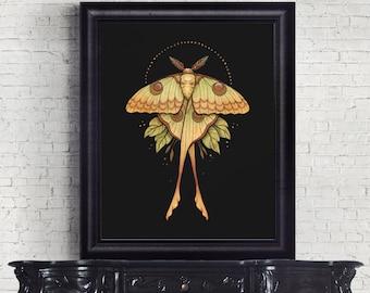 Comet Moth Watercolor Art Print, 8x10, Watercolor Reproduction, Unframed