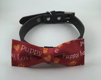 Valentine-Puppy Love-Pet Bow Tie