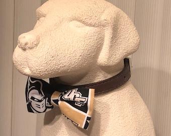UCF #2 Pet Bow Tie