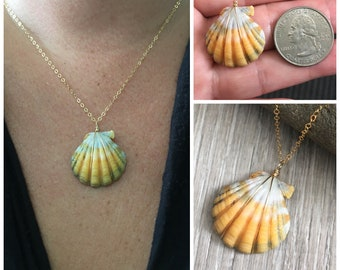 Sunrise Shell Necklace (Quarter size), Gold Fill Necklace, Sunrise Shell Jewelry, Hawaii, Hawaiian Jewelry, Sea Shell, Simply Sparkle Design