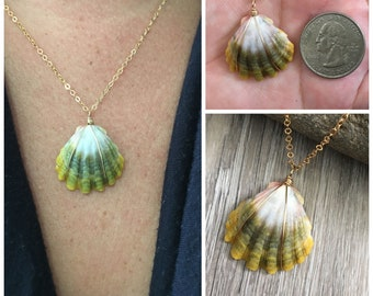 Moonrise Shell Necklace (Quarter size), Gold Fill Necklace, Sunrise Shell Jewelry, Hawaiian Jewelry, Hawaii Sea Shell, Moonrise Necklace