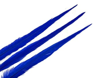 """Long Feathers , 10 Pieces - 20-22"""" Midnight Blue Bleached and Dyed Long Ringneck Pheasant Tail Feathers : 4139"""