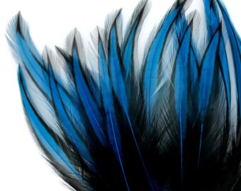 c0b076b964383 Feather galore for crafts costume and hair by MoonlightFeatherInc