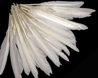 1 Pack Black Tipped White Duck Pointer Feathers 0.50 Oz Imitation Eagle Hawk