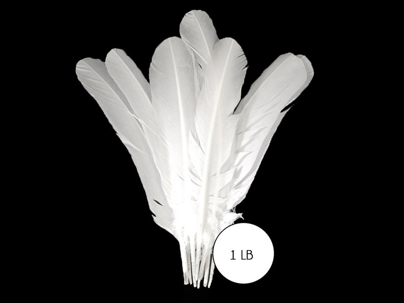 bulk LIME GREEN Turkey Rounds Quill Wholesale Feathers 1//4 lb