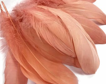 Wedding Feathers, 1 Pack - Champagne Goose Nagoire Loose Feather - 0.25. Oz Craft Supply : 3296