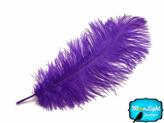 """8-10/"""" Black Ostrich Dyed Drabs Feathers Halloween Prom Centerpiece 10 Pieces"""