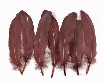 Goose Feathers, 1 Pack - Brown Goose Satinettes loose Wing Quill Feathers 0.3 oz. Halloween Craft Costume : 3778