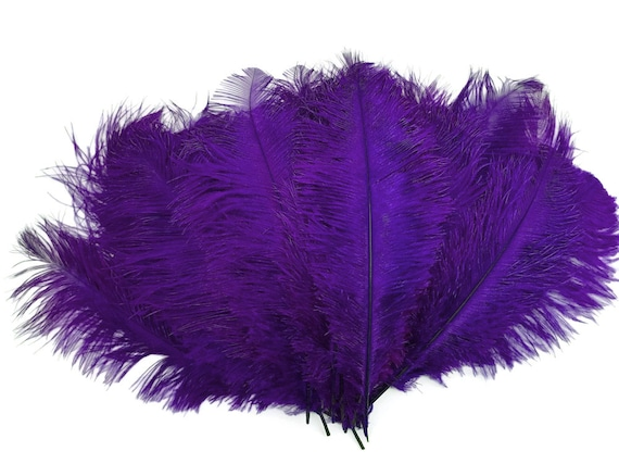 "10 Piece Purple Ostrich Tail Large Feathers Centerpiece Halloween Costume 12-16/"""