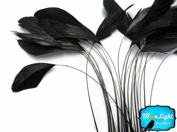 bielizna duży czarny kogut