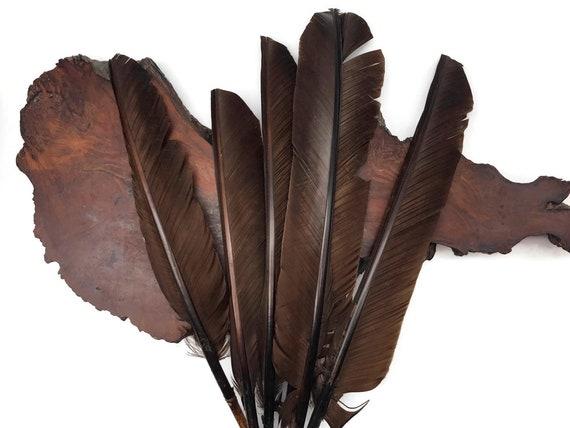 ORANGE 30 Pcs Turkey Plumage 1-4 Feathers