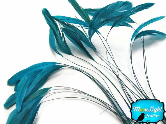 537 1 Dozen Stripped Feathers Purple Stripped Rooster Coque Tail Feathers