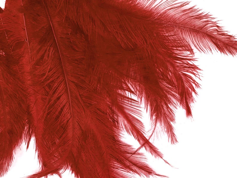 20 Pieces 12-18 Red Mini Ostrich Spads Chick Body Feathers Halloween Costume Centerpiece Ostrich Feathers 3350