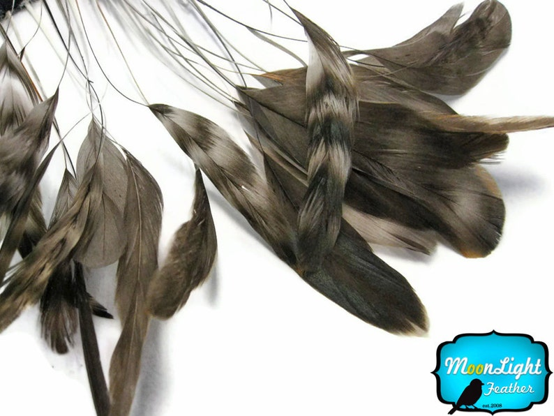 Stripped Feathers 1 Dozen  NATURAL chinchilla Stripped image 0