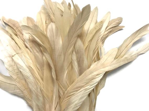 BLACK Strung Natural Bleach Coque Tails Wholesale Feathers bulk 1//2 Yard