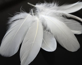 Nagoire Feathers, 1 Pack - Snow White Goose Nagoire Loose Feather - 0.25 Oz Craft Supply : 1832