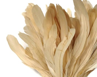 Super Long Rooster Feathers, 2.5  Inch Strip -  Ivory Strung Natural Bleach Coque Tails Feathers : 275