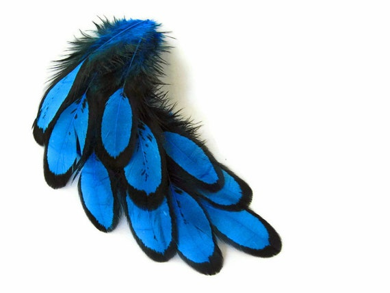 1 Dozen Turquoise Blue Whiting Farms Laced Hen Saddle Feathers Fly Tying Craft