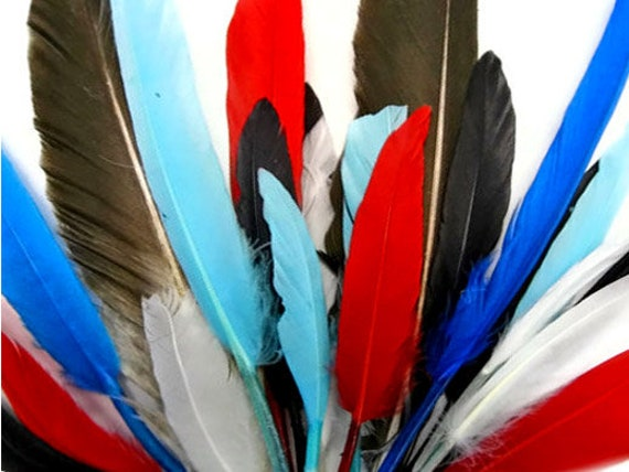 12 Bright Red Tiny Duck Cosse US Seller Cochette Quill Feathers