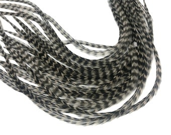 Hair Feathers, 10 Pieces - Grey Dun Grizzly Thin Long Rooster Hair Extension Feathers Whiting Farms Saddle : 374